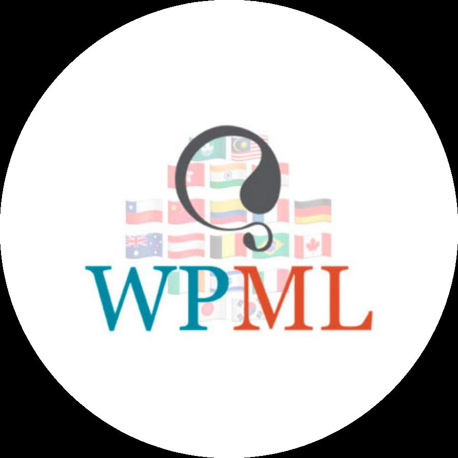 Je website vertalen met WPML